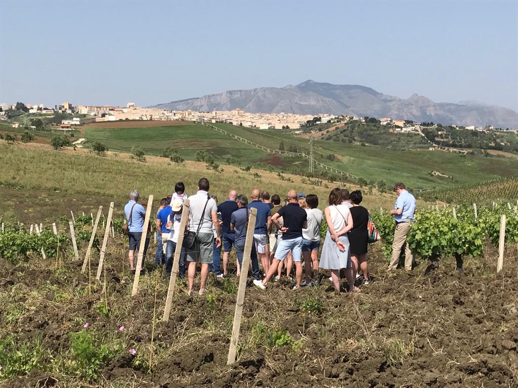 Distoc wijnreis 2018